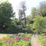 Nearby Achamore Gardens.