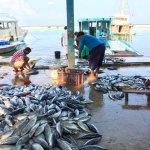 Attraction: Fishmarket
