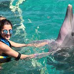 Photo of Dolphin Discovery Isla Mujeres