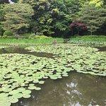 Photo of Heian Shrine