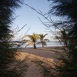 Foto de Kololi Beach Club
