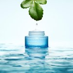 SPA by Clarins Photo