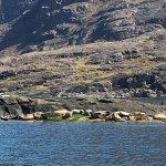 Photo of Bella Jane Boat Trips & AquaXplore