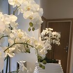 Beautiful orchids welcomed us.