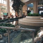 Lobby entry, the amazing decor and indoor ponds/greenery help remind you that you are on vacatio