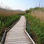 Photo de RSPB Conwy Nature Reserve