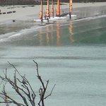 vue sur la plage et les sports nautiques très actifs