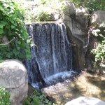 Waterfall at zoo