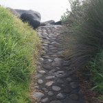A short path leading from parking to jetty boulders