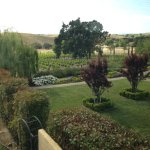 View of manicured grounds and vineyards beyond - from our room!