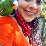 Foto di Macaw Mountain Bird Park & Nature Reserve