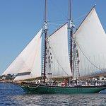 Beautiful Sail in Gloucester Harbor