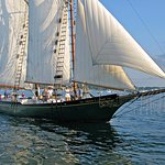 Under Sail in Gloucester