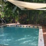 Photo de Travelers Palm Inn