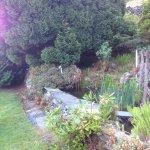 Garden at Greenbank