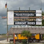 Photo de Buffalo Tiger's Airboat Tours