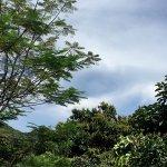 Koh Phangan Pavilions Foto