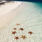 Foto de Playa Sirena