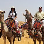 Loving the Camels