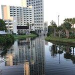 Hilton Orlando Buena Vista Palace Disney Springs Foto