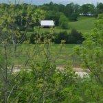 Photo de Clarion Inn Willow River
