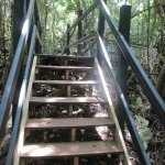 Stairs and walkways