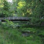 a bridge over the C&O Canal
