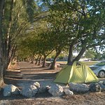 Camping section