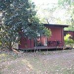Bush bungalow.