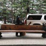 Foto de The Lodge at Jackson Hole