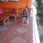 Foto de La Solana Suites and Resort