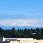 Crowne Plaza Seattle Airport Foto