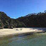 Photo de Wilsons Abel Tasman