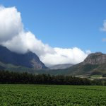 Beautiful Franschhoek scenery