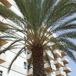 Photo de Principado Hotel