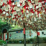 Photo of Chinese Folk Culture Village