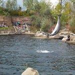 Photo of Nuremberg Zoo