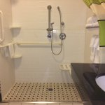 ADA standard roll in shower excellent mounting of shower in middle for reach to seat