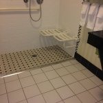 ADA standard roll in shower with excellent use two drain system