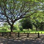 Photo de Darwin Botanic Gardens