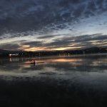 Morning Rowing on Lake Burley Griffin