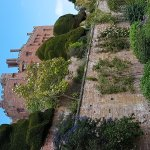day at Powis Castle