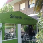 Soto Verde