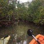Photo de Sarasota Paddleboard Company