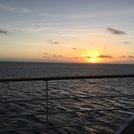 Reef Encounter Foto
