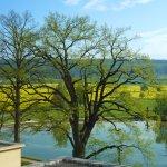 Foto de Spa Resort Tree of Life