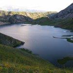 Nature & Wildlife Tours