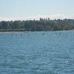 Paddleboarders at English Bay