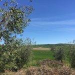 Photo of Agriturismo da Lorena