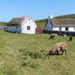 Harry Kelly's Cottage